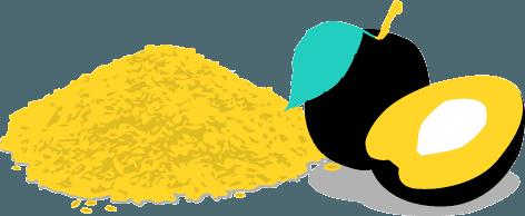 Pflaumen-Flohsamen können bei der Verdauung helfen